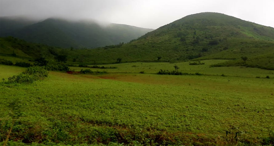 Monsoon at Koraput Valley Odisha